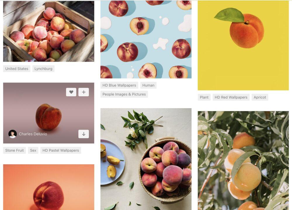桃の画像たち
